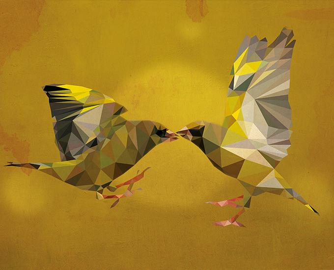 Birds Polygon